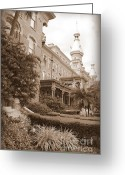 Minarets Greeting Cards - Tampa Gem in Sepia Greeting Card by Carol Groenen
