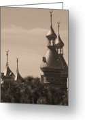 Cityscape Digital Art Greeting Cards - Tampa Minarets  Greeting Card by Carol Groenen