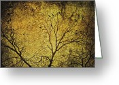 Tree Limbs Greeting Cards - Tangled Greeting Card by Skip Nall
