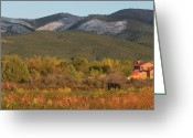Adrienne Petterson Greeting Cards - Taos New Mexico Scene Greeting Card by Adrienne Petterson