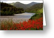 Pure Digital Art Greeting Cards - Taupo New Zealand River and Flowers Greeting Card by Mark Duffy