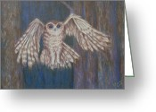 Woods Pastels Greeting Cards - Tawny Owl in Flight Greeting Card by Joann Renner