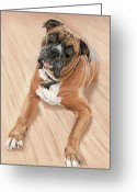 Dog Prints Pastels Greeting Cards - Taz my best friend Greeting Card by Vanda Luddy