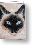 Tans Greeting Cards - Tazzy Greeting Card by Jamie Frier