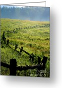 Rail Fence Greeting Cards - Tea Creek Meadow Greeting Card by Thomas R Fletcher