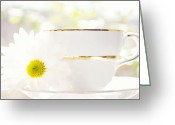 Sunshine Daisy Greeting Cards - Teacup Filled with Sunshine Greeting Card by Kim Fearheiley