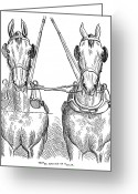 Carriage Team Greeting Cards - Team Of Horses, 1875 Greeting Card by Granger