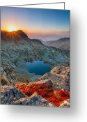 Evgeni Dinev Greeting Cards - Tears Of the Giant Greeting Card by Evgeni Dinev