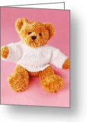 Consoling Greeting Cards - Teddy Bear Greeting Card by Terry Mccormick
