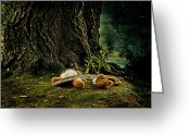 Dark Moss Green Photo Greeting Cards - Teddy With A Saw Greeting Card by Joana Kruse