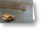 Chipmunk Greeting Cards - Temptation Greeting Card by Lori Deiter