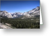 Reno Gregory Greeting Cards - Tenaya Valley Greeting Card by Reno Gregory