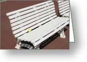 Empty Park Bench Greeting Cards - Tennis Court Benches Greeting Card by Skip Nall