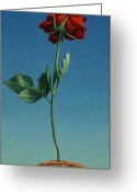 Still Life Greeting Cards - Tenuous Still-Life 1 Greeting Card by James W Johnson