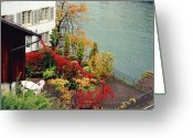 Green Greeting Cards - Terrace overlooking the Limmat River in Zurich Switzerland Greeting Card by Susanne Van Hulst