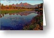 Grand Tetons Greeting Cards - Teton Wildflowers Greeting Card by Scott Mahon