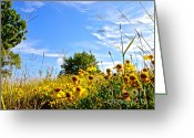 Wispy Greeting Cards - Texas Autumn Greeting Card by Chuck Taylor