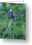 Blue Flowers Pastels Greeting Cards - Texas Beauty Greeting Card by Billie Colson