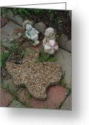 Texas.photo Photo Greeting Cards - Texas Critter Summer Greeting Card by Robyn Stacey