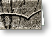 Tree-covered Greeting Cards - Textured Snow Greeting Card by Simone Hester