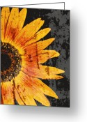 Pdx Greeting Cards - Textured Sunflower Greeting Card by Cathie Tyler