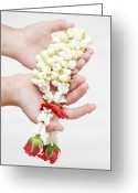 Holding Flower Greeting Cards - Thai culture jasmine in hand Greeting Card by Anek Suwannaphoom