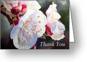 Apricot Painting Greeting Cards - Thank you Card Apricot Blossom Greeting Card by Irina Sztukowski