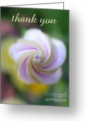 Inside You Greeting Cards - Thank You Greeting Card by Tina Marie