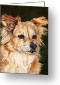 Fine Art - Animals Greeting Cards - The Adventurous Dog Greeting Card by Enzie Shahmiri