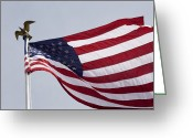 Independence Park Greeting Cards - The American Flag Greeting Card by Tim Laman