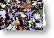Husband Digital Art Greeting Cards - The Autumn Mosaic Greeting Card by Mindy Newman