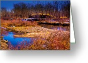 Flood Plain Greeting Cards - The Banks of the South Platte River II Greeting Card by David Patterson