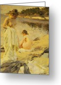 Nudes Greeting Cards - The Bathers Greeting Card by Anders Leonard Zorn