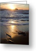 Silhouettes Greeting Cards - The Beach At Sunset In Olympic National Greeting Card by Taylor S. Kennedy