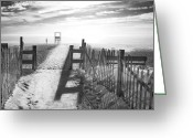 Fence Greeting Cards - The Beach in Black and White Greeting Card by Dapixara Art