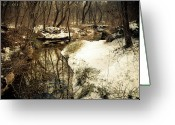 Winter Trees Greeting Cards - The Beauty of Nature Greeting Card by Iris Greenwell