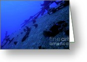Porthole Greeting Cards - The Belama Shipwreck Greeting Card by Sami Sarkis