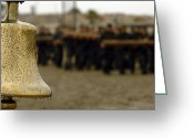 Seal Greeting Cards - The Bell Is Present On The Beach Greeting Card by Stocktrek Images