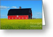 Rural Art Greeting Cards - The Big Red Barn Greeting Card by Bob Christopher