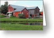 Amish Farms Greeting Cards - The Big Red Barn Greeting Card by Lydia Warner Miller