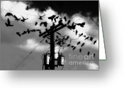 Telephone Pole Greeting Cards - The Birds Greeting Card by David Lee Thompson