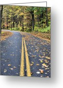 Rain Forrest Greeting Cards - The Blue Ridge Parkway Greeting Card by JC Findley