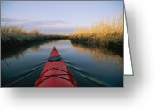 Southern States Greeting Cards - The Bow Of A Kayak Points The Way Greeting Card by Skip Brown