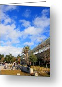 Golden Gate Park Greeting Cards - The California Academy of Sciences in San Francisco . 40D4308 Greeting Card by Wingsdomain Art and Photography