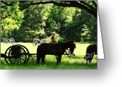 Historical Re-enactments Greeting Cards - The Cannons Greeting Card by Kim Henderson