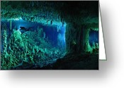 West Indies Greeting Cards - The Cascade Room Leads Divers Deeper Greeting Card by Wes C. Skiles