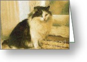 Lapdog Greeting Cards - The cat Greeting Card by Odon Czintos