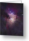 H Ii Regions Greeting Cards - The Center Of The Orion Nebula The Greeting Card by Robert Gendler