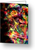 Chimpanzee Greeting Cards - The Chimp Greeting Card by Jack Zulli