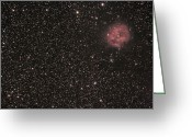 Cocoon Greeting Cards - The Cocoon Nebula Greeting Card by Phillip Jones